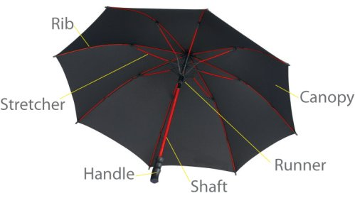 Part of an umbrella
