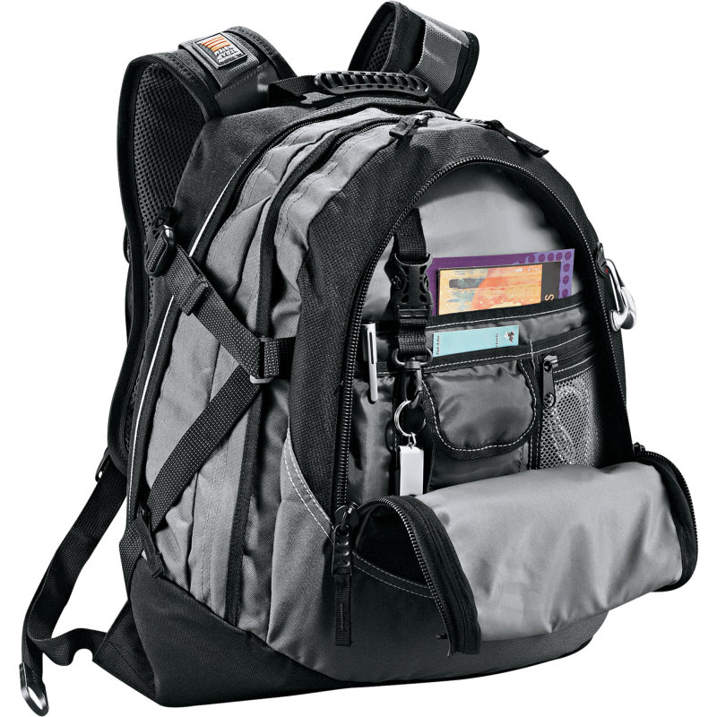 High SierraFunction Day Pack Image 2