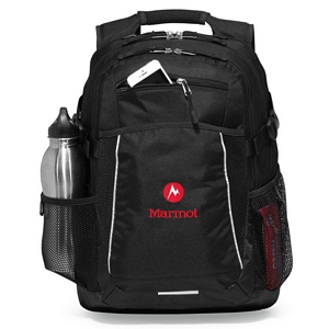 Computer Backpack 1