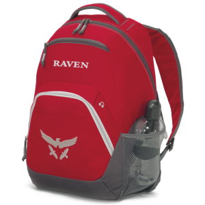 Multi Function Laptop Backpack
