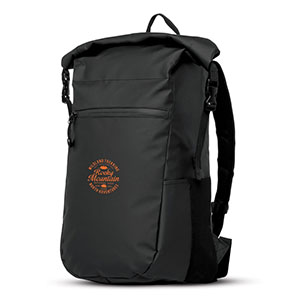 Water Resistant Backpack Image 2