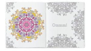 Coloring Book Anti-Stress Soft Cover Journal Image 2