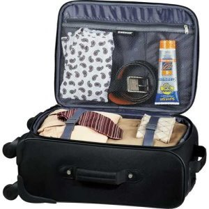 Wenger 19 4-Wheeled Spinner Carry-on Image 2