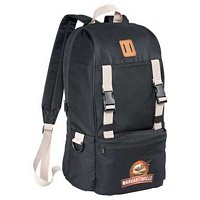 Back Country Compu-Backpack